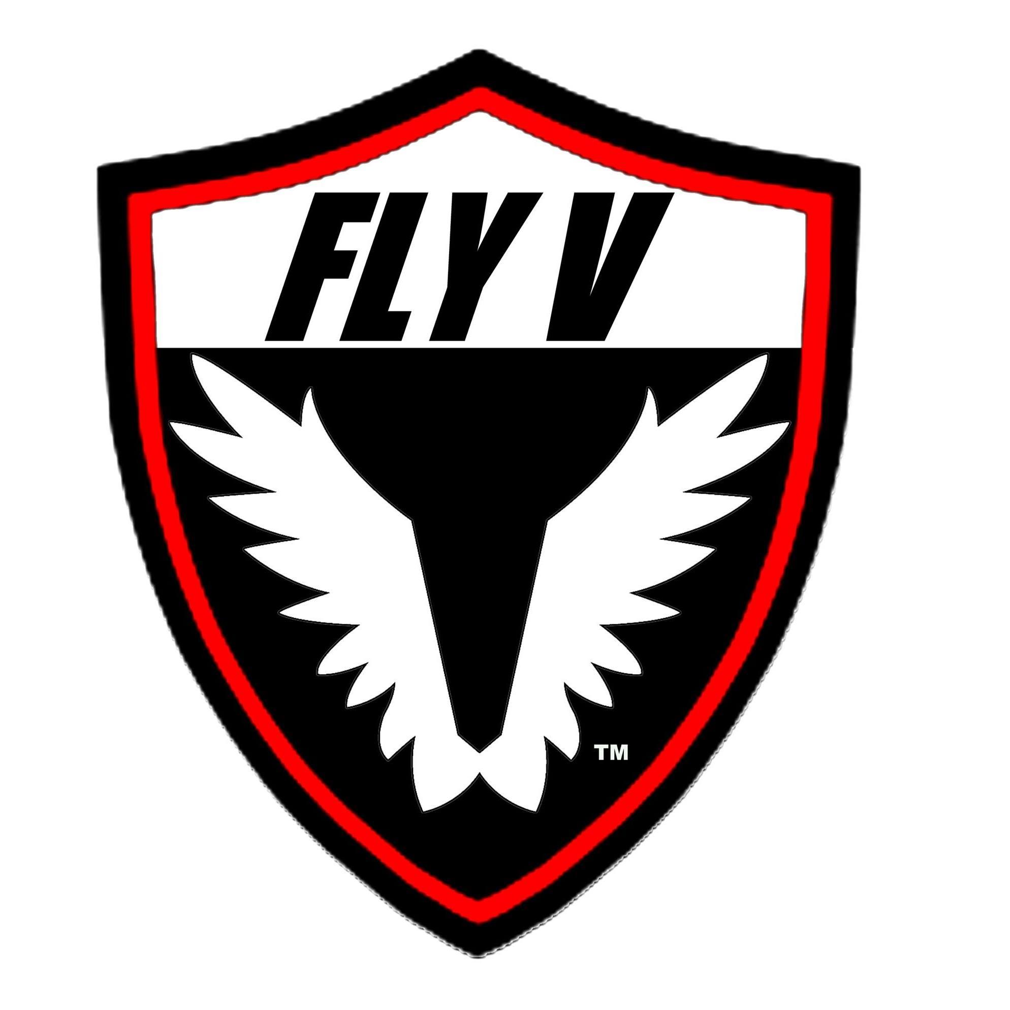 Fly V