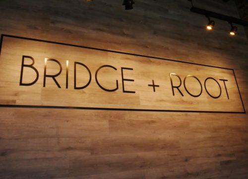 Bridge + Root